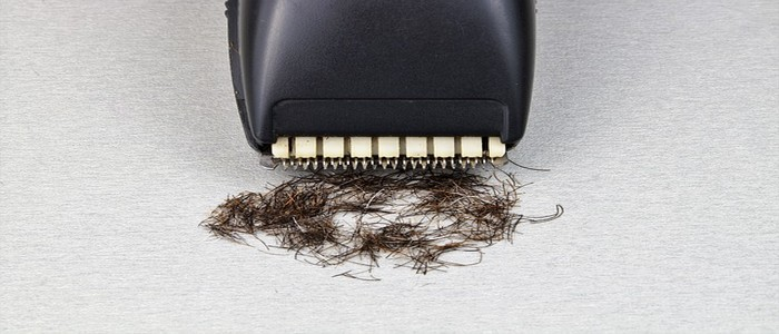 how to oil hair clippers